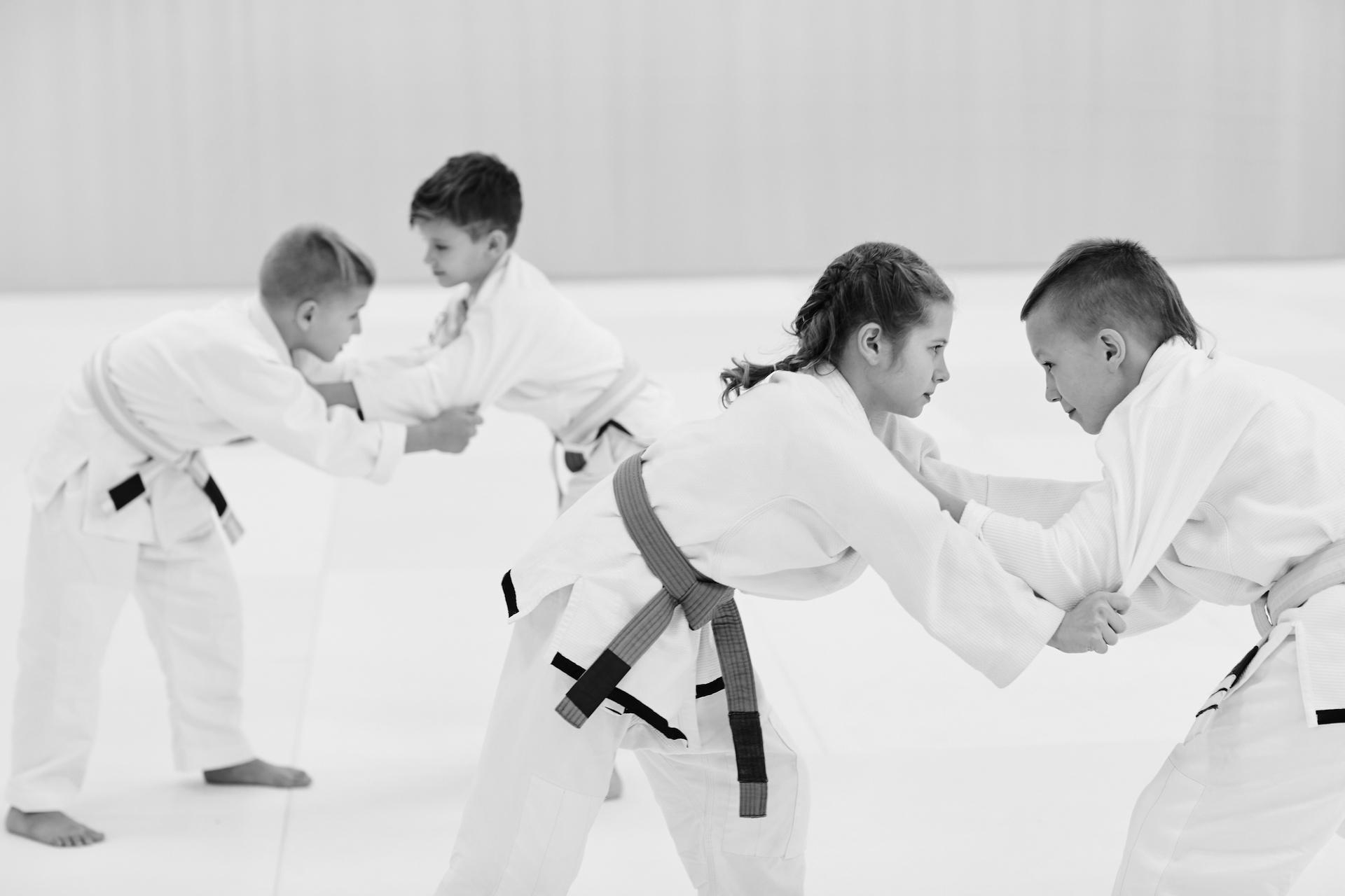Seicho Karate